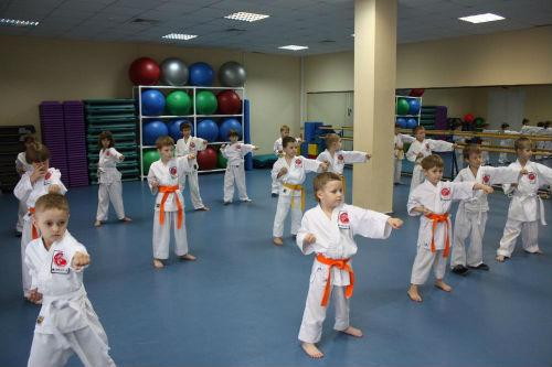 Кекушинкай Карате дети с 4-7 лет фото