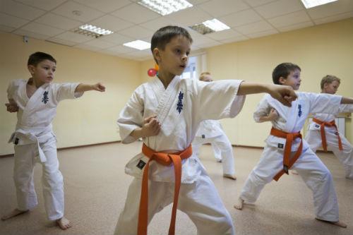 Кекушинкай Карате дети с 7 до 11 лет фото