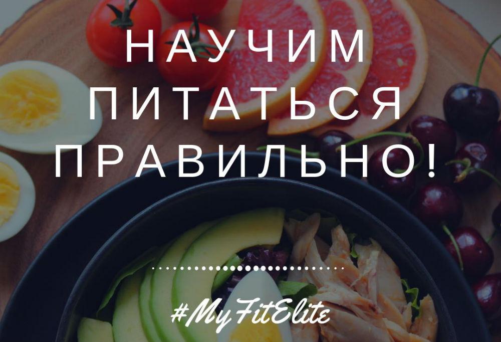 Разработка программы питания МойФитЭлит